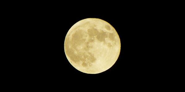 本格焼酎『明月』誕生秘話